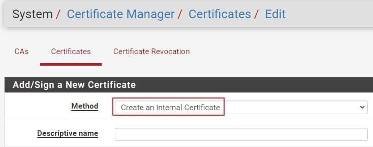 08 create openvpn server certificate